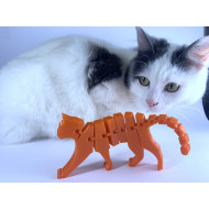 Flexi-Cat